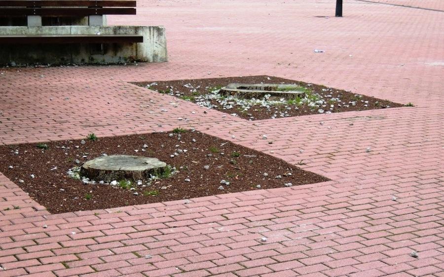 Piedras sueltas junto al Centro Cívico